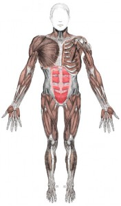 human body  how to survive 2012