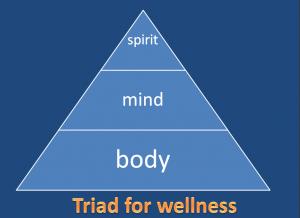 Dr. Vie's triad for health & wellness